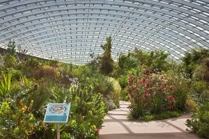 National Botanical Gardens - Things to do